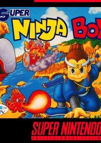 Super Ninja Boy – фото обложки игры