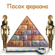 Обложка Посох фараона