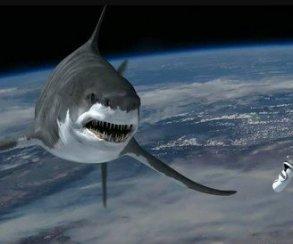 Великолепная идиотия: в«Акульем торнадо 5» добычей станет весь мир