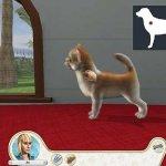 Скриншот Paws & Claws: Pampered Pets – Изображение 1