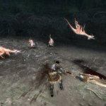 Скриншот Monster Hunter Tri – Изображение 41