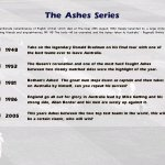 Скриншот International Cricket Captain Ashes Year 2005 – Изображение 17
