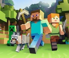 Неделайте так: заDDOS-атаки Minecraft подростка посадили на2 года