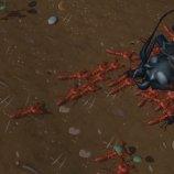 Скриншот Empires of the Undergrowth