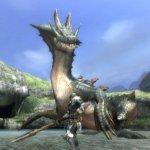 Скриншот Monster Hunter Tri – Изображение 22