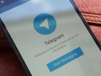 В Telegram для Android появились пользовательские темы оформления