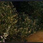 Скриншот Fable Legends – Изображение 36