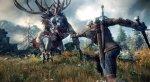 The Witcher 3: Wild Hunt. Новые скриншоты - Изображение 4