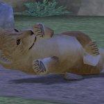 Скриншот My Zoo – Изображение 11