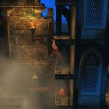 Скриншот Prince of Persia The Shadow and The Flame