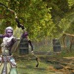 Скриншот Dungeons & Dragons Online – Изображение 163