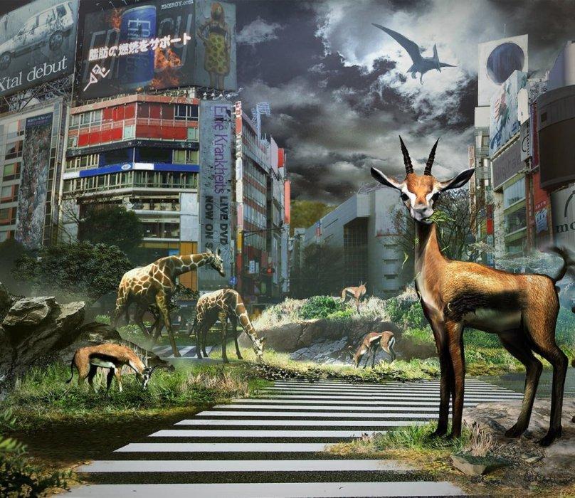 Рецензия на Tokyo Jungle. Обзор игры - Изображение 1