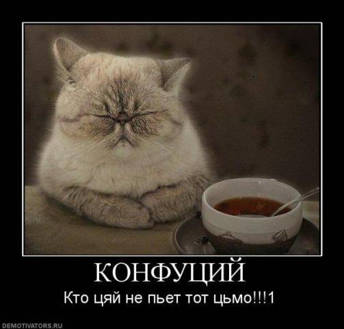 Он пьет чай - Изображение 8