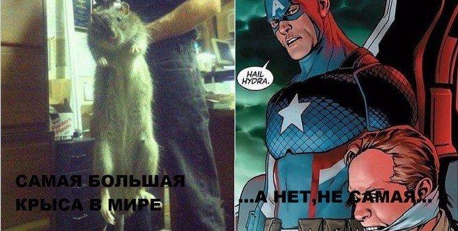 Интернет взбешен тем, что Капитан Америка оказался нацистом. - Изображение 12