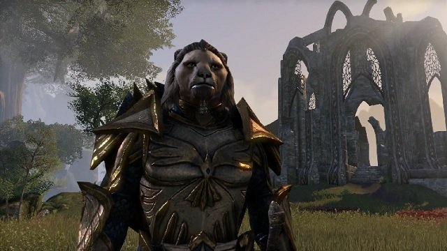 Первое обновление для The Elder Scrolls Online выпустят на неделе - Изображение 1