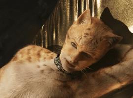 «Кошки» выиграли несколько премий «Золотая малина»
