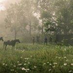 Скриншот Red Dead Redemption 2 – Изображение 13