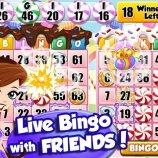 Скриншот Bingo PartyLand – Изображение 4