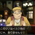Скриншот Phoenix Wright: Ace Attorney - Dual Destinies – Изображение 2