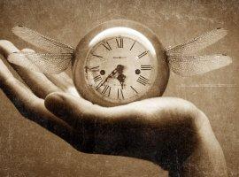 Kanobu Time. Путешествия во времени. Список литературы