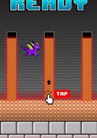 Flying Dragon - Tailspin Adventure Through the Maze – фото обложки игры