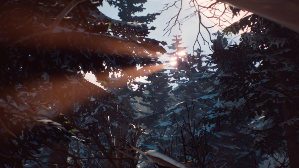 Рецензия на The Awesome Adventures of Captain Spirit, приквел Life is Strange 2, игры студии Dontnod   Канобу - Изображение 6228