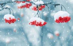 Думаете эта картинка отображает зиму? Нет на самом деле она про отмороженность.