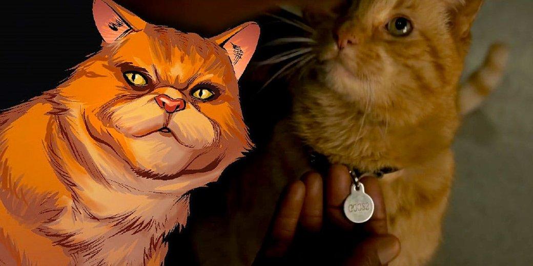«Все говорили про кота»: первые отзывы о фильме «Капитан Марвел» оказались вполне положительными | Канобу - Изображение 1