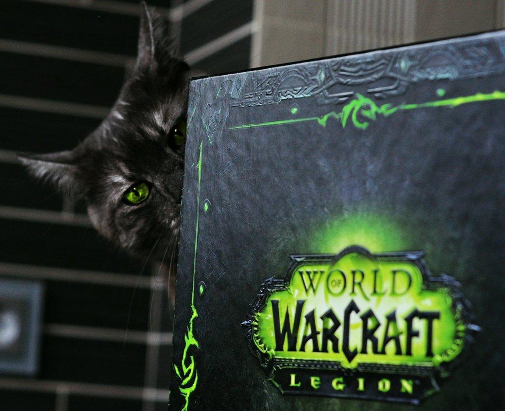 Распаковка коллекционного издания World ofWarcraft: Legion. С котом! | Канобу - Изображение 536