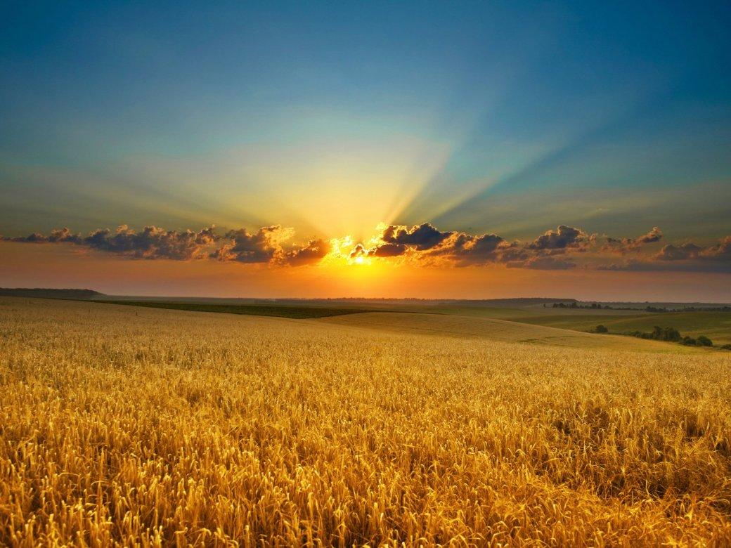 Предвкушая закат | Канобу - Изображение 12438