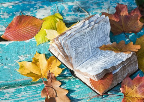 Новинки книжного рынка за последние две недели № V | Канобу - Изображение 1