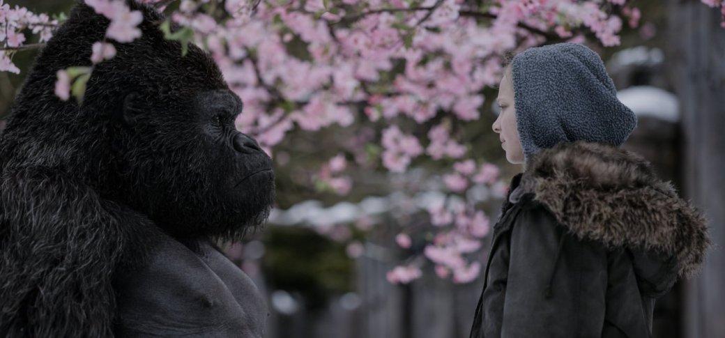 Рецензия на «Планету обезьян: Война»